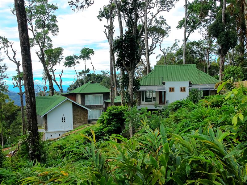 Luxury Resorts in Munnar