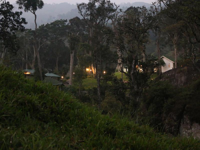 Best Resorts in Munnar Neelakurunji Luxury Plantation Resort